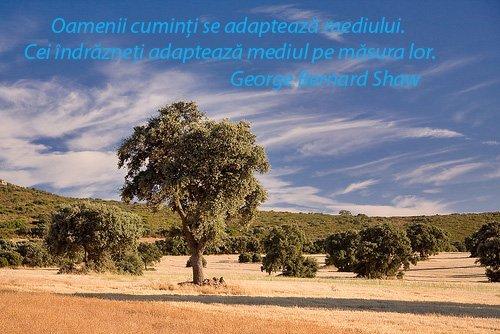 citate despre mediu sasaas   Love Site citate despre mediu